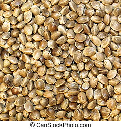 Hempseed for background