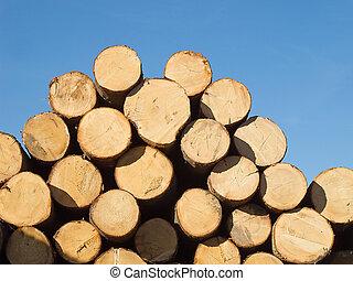 de madera, fresco, troncos