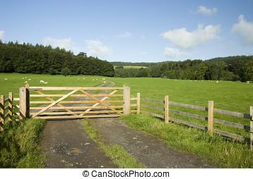 Farm gate, Lake District, UK