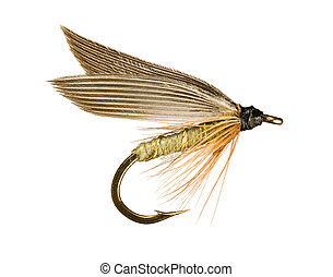 Grey Winged Olive Wet Trout Fishing Fly Isolated on White...