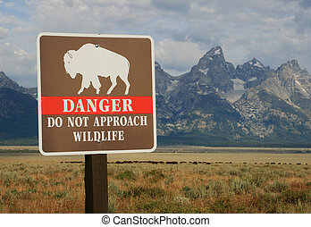 danger wildlife sign - danger do not approach wildlife sign...