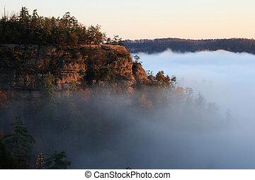 cliff rises above fog