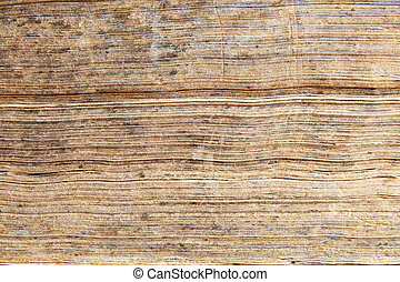 edges of antique book pages - the worn edges of the pages of...