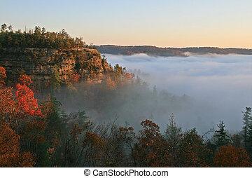 fog shrouded cliff