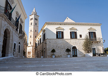 Panoramic view of Trani Apulia