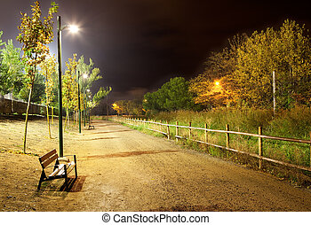 Night city park