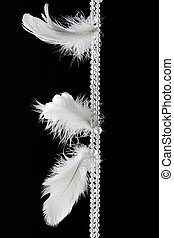 White feathers hanging against dark black background