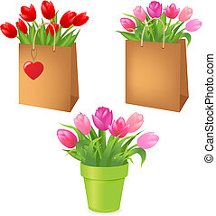 Tulips In Package