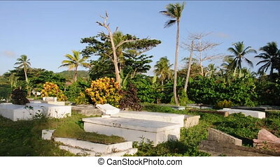 cemetery mausoleums with palm trees in the Caribbean Island...