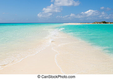 tropical, playa, roques, islas, venezuela