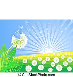 vector dandelions blooming against the backdrop of sunrise -...