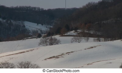 Winter farm deer - Winter farm with deer on a distant hill,...