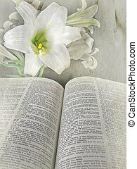 Easter Sunday - Easter lily and holy Bible with textured...
