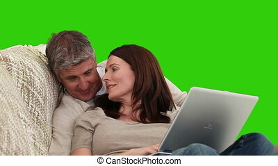 Cute elderly couple working on a laptop in the living room -...