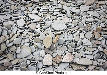 Fundy Beach Stones - Collection of water-eroded beach stones...
