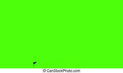 Businessman and a businesswoman having a meeting - Chromakey...