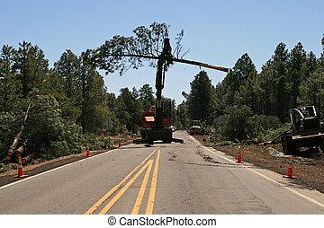 Knuckleboom Loader moves tree - a Knuckleboom Loader moves a...