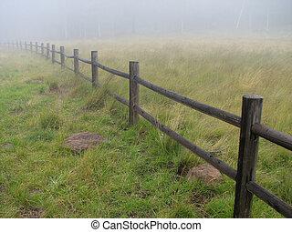 misty fence