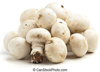 mushroom pile isolated on a white background