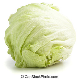 lettuce - fresh lettuce isolated on a white background