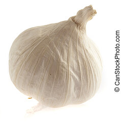 single garlic isolated on a white background