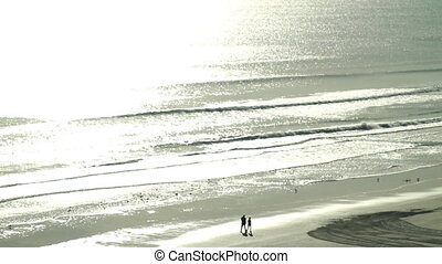 Beach Couple Walking