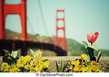 Spring in San Francisco