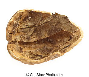 walnut shell isolated on a white background