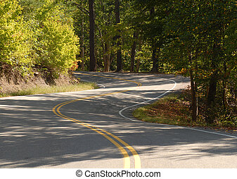 Winding road going through a forest