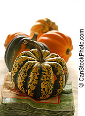 Colorful pumpkins and gourds in an autumn setting bathed in...
