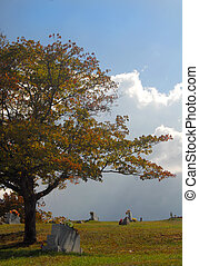 Lone tree in a rural cemetery during the autumn - A lone...