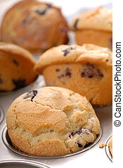 Close up of fresh warm blueberry muffins in a muffin pan