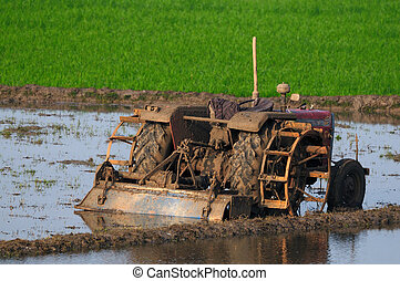 Agriculture - agricultural land being ploughed using an old...