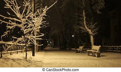 Night walk - A man walks at night in winter park.