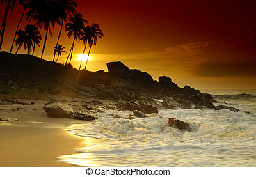 Sunset on Sri Lanka - Beautiful colorful sunset over sea and...
