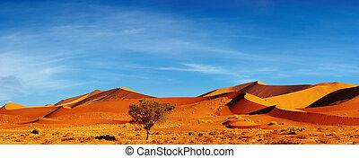 Namib Desert, Sossusvlei, Namibia - Dunes of Namib Desert at...