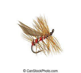 Trout Fishing Fly - Dry Trout Fishing Fly Isolated on White...