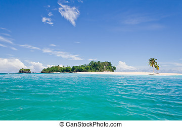 Deserted island - Desert island with palm trees on the...