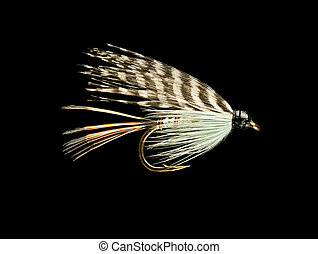 Trout Fishing Fly - Blue Wet Trout Fishing Fly Isolated on...