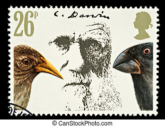 Postage Stamp - UNITED KINGDOM - CIRCA 1981: A British Used...