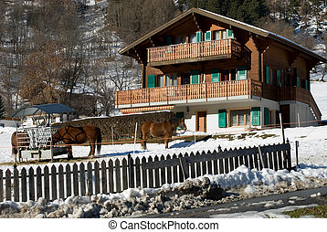 Swiss Farmhouse - Horses in front of an alpine farmhouse,...