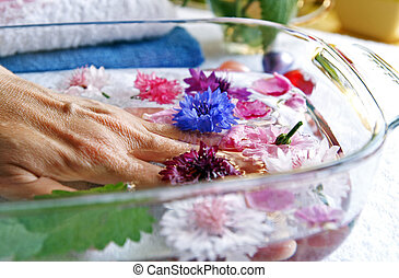 Herbs and flowers for woman hands care - Woman elderly hand...