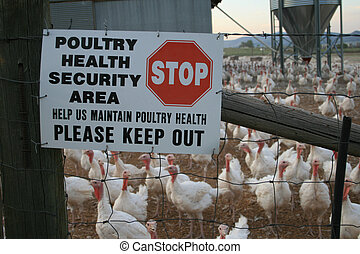 turkey farm sign - poultry health security area sign on a...
