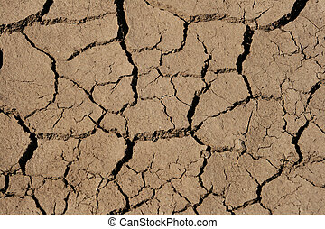 drying mud cracks - mud cracks in wet clayey soil