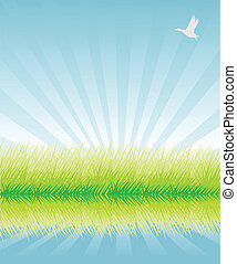 Green grass vector illustration background