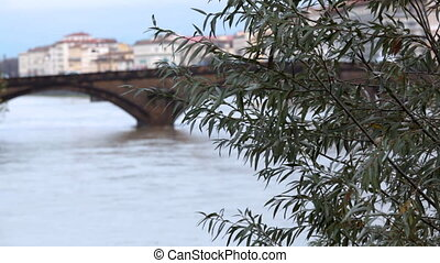 Bridge over channel in Florence - Bridge over channel in...