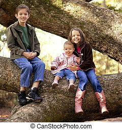 three kids in tree - three children playing in large tree