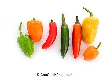 pimentão, habanero, serrano, quentes, Mexicano,...