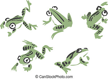 frog illustration