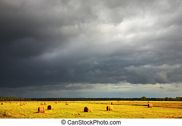 Hayfield - Landscape with hayfield and storm clouds